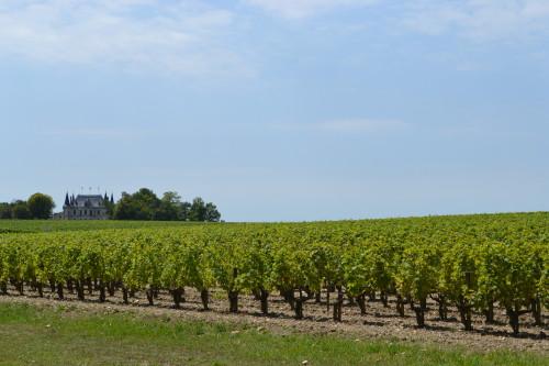 Um dos vários castelinhos de vinho perto de Médoc
