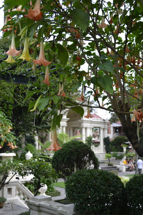 Garden of Dreams, outro mundo dentro da cidade