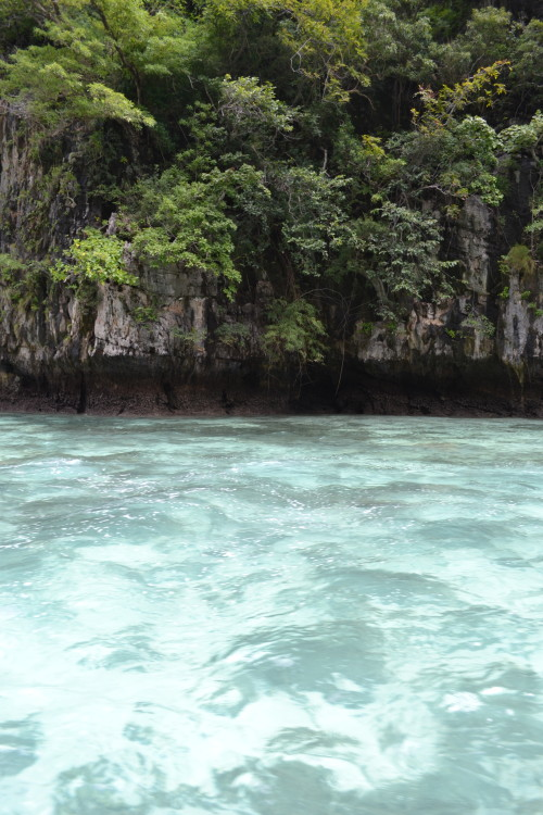 Cor absurda da água (as sombras são corais)