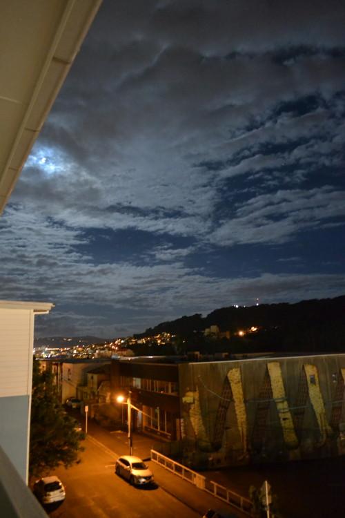 Vista do nosso quarto na casa do CS em Newton, Wellington